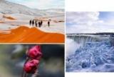 Аномальная зима-2018: снег в Сахаре, в Америке -40 и жизнеспособным Ниагарский водопад и цветущие розы в Украине (ФОТО+ВИДЕО)
