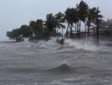 Разрушительная сила стихии: ураган