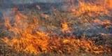 ГСЧС предупреждают о пожарной опасности в Украине 12-14 августа